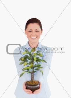 Attractive red-haired female holding a houseplant while standing