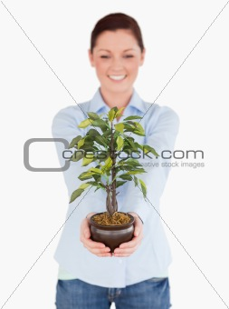 Beautiful red-haired female holding a houseplant while standing