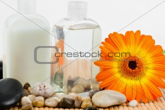 Close up of sunflower with  round smooth pebbles and glass bottl