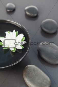 Close up of a white flower floating in a black bowl surrounded b