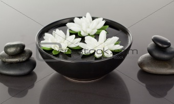 Close up of flowers floating surrounded by stacks of black pebbl
