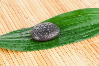 Close up of a black stone on a leaf
