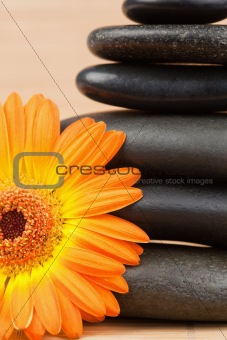 Close up of an orange sunflower and a black stones stack