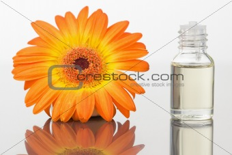 A glass phial and an orange gerbera