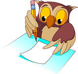 Wise owl  writing
