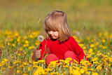 boy with long blond hair picking dandelions in a spring field
