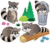 Cartoon racoons collection