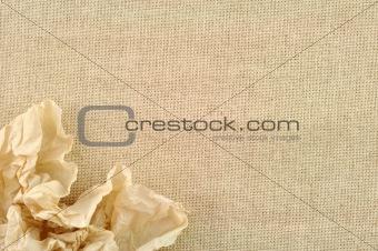 frame made of Tissue
