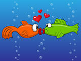 Fish love