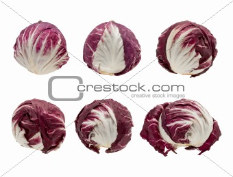 Six Heads of Radicchio