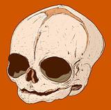 Human hand drawn skull