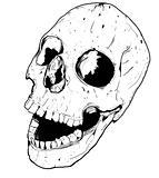 Human hand drawn skull fear death head dead pirate