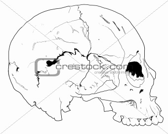 Human hand drawn skull fear death head dead pirate