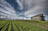 Abandoned Farm