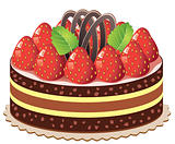 vector cake with strawberry and chocolate