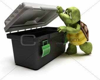 Tortoise with tool box