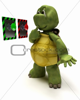 Tortoise with push button