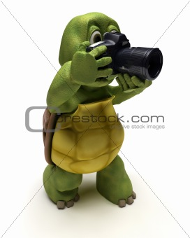 Tortoise with slr camera