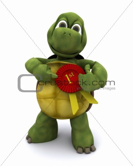 Tortoise with a rosette