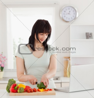 Beautiful brunette woman cooking while relaxing with her laptop