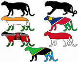 Leopards flags