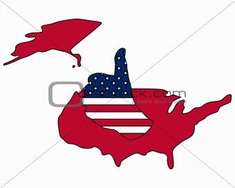 American hand signal