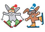 Rabbit_skier