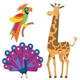 Exotic_animals