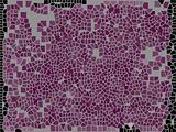 Purple mosaic