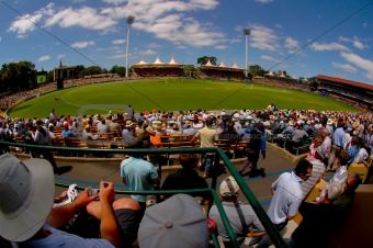 One Day Cricket at the Adelaide Oval
