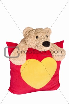 Bear with pillow