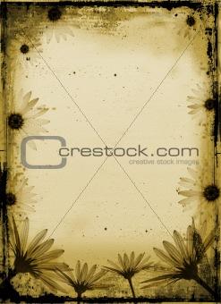 Grunge daisies
