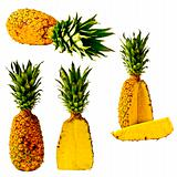 Isolated Pineapple Series