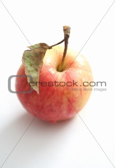 One red apple on a white background
