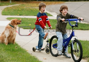 Boys Playing with the Dog