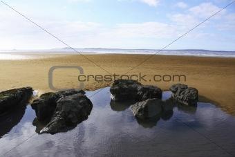 beale beach rise