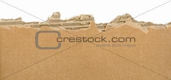 Cardboard ripped