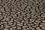Parched land 