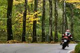 Motorbike in fall
