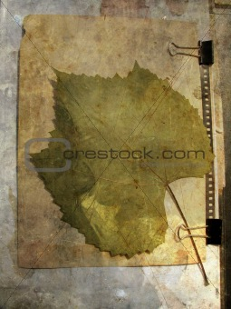 Grunge grape leaf