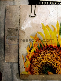 Grunge sunflower postcard