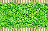 grass frame on bamboo background