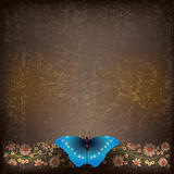 abstract grunge illustration with butterfly and flowers