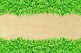 grass frame on burlap texture background