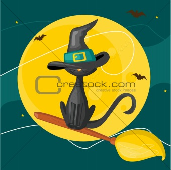 Cat on a broom