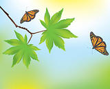 vector maple leaves and butterflies