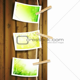 green foliage photos pinned to a rope