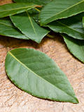 Bay Leaves On Chopping Board