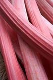 Sticks Of Rhubarb
