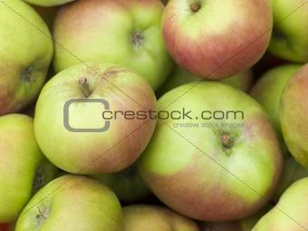 Apples, Cox